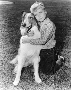 Timmy-hugs-Lassie