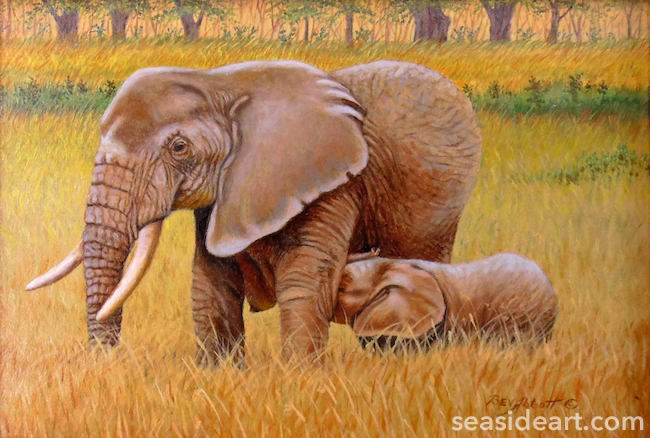 Maternal Elephant by Beverly Abbott Image