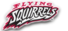 flying squirrels logo