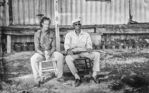 Piedmont Blues Image