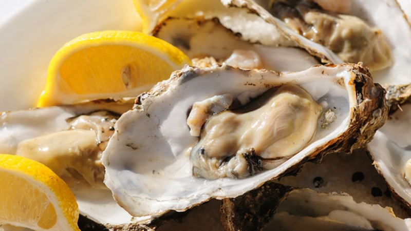 Oysters Events Image