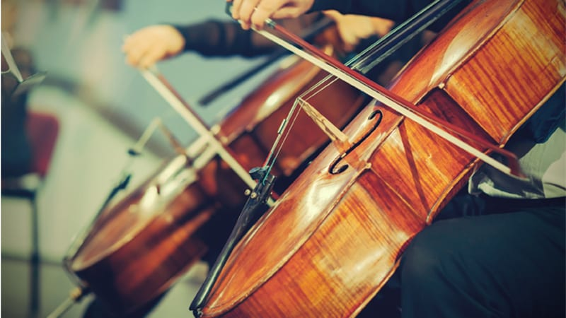 Orchestra Image