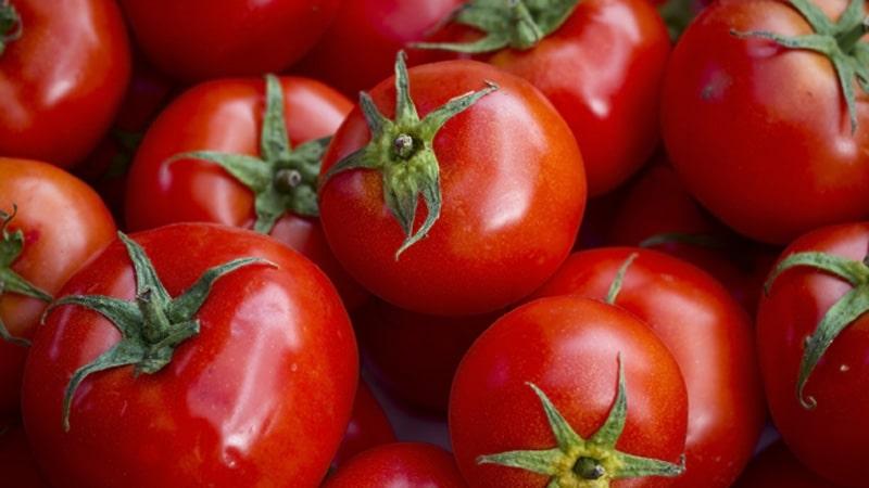 Tomatoes Image