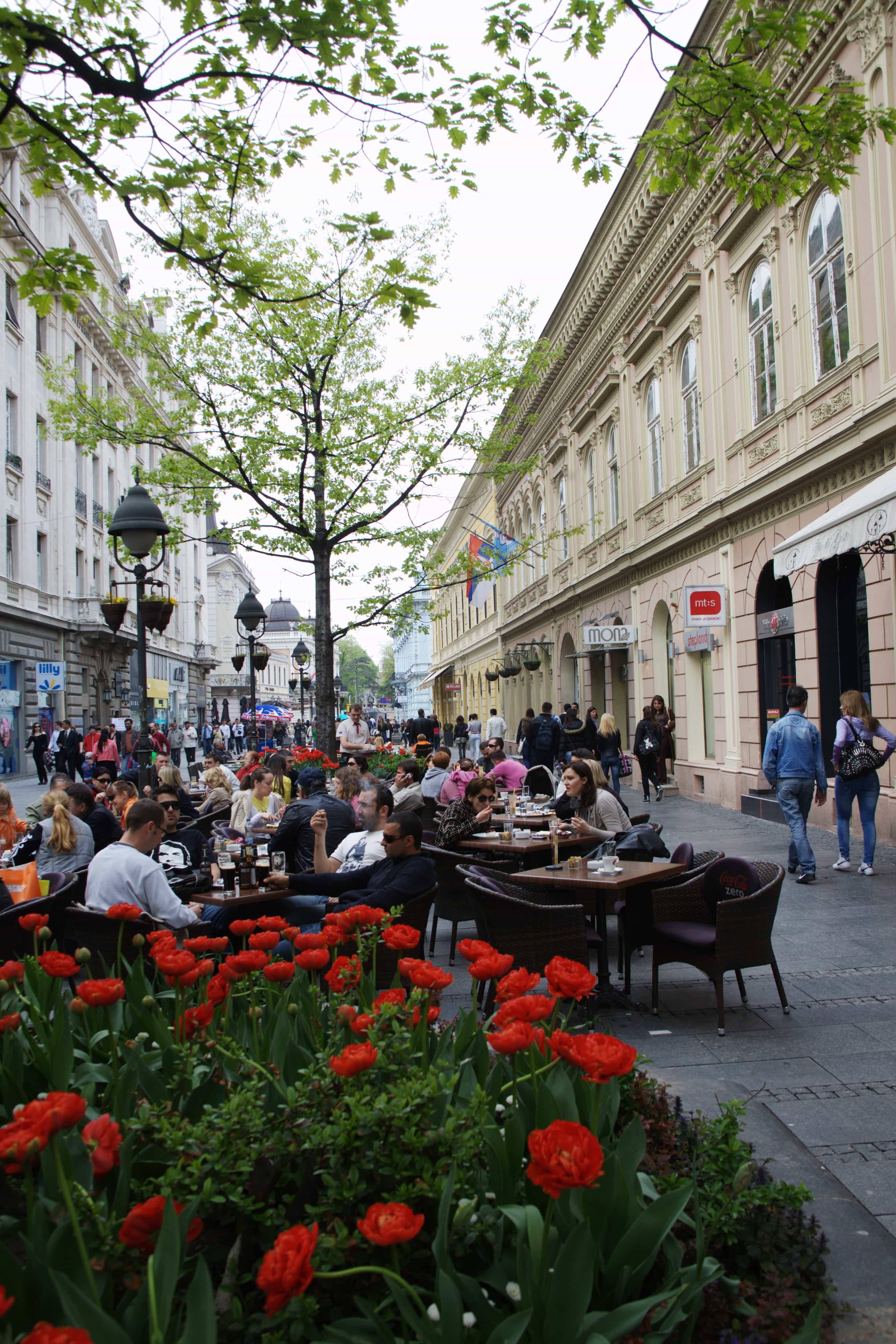 Knez Mihailova dining in Belgrade, Serbia