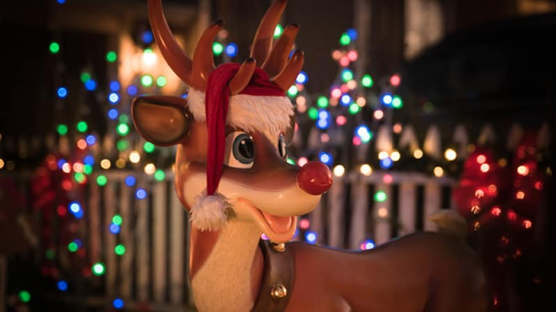 Rudolph Holiday Lights Image