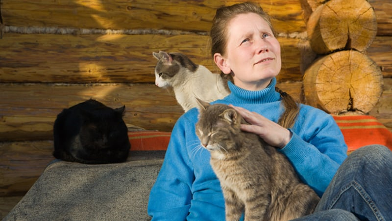 Crazy cat lady Image