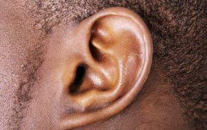 Hearing Health Foundation Ear Image