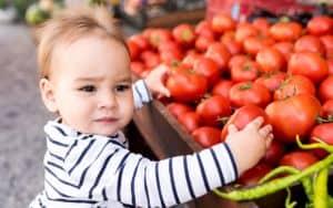 Hanover Tomato Festival Image