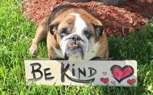 Be_Kind Image