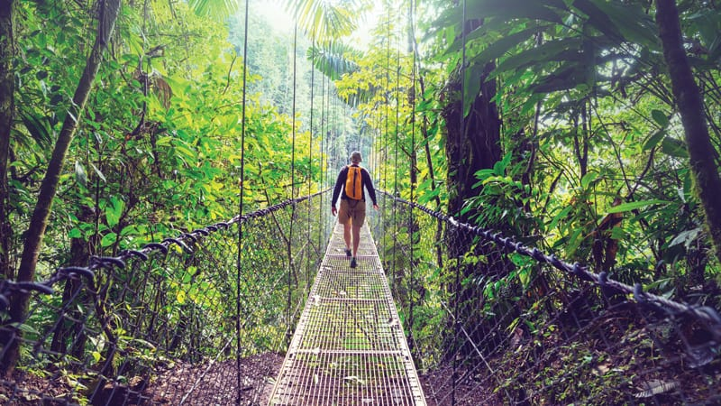 Hanging Bridges Trail at Mistico_Park Image