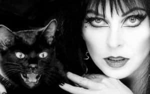 Elvira Image