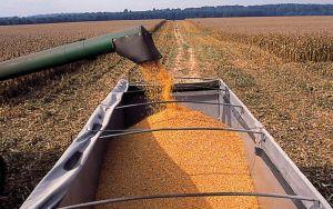 Tractor_Corn Image