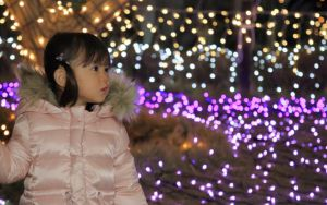 Japanese_Christmas Image