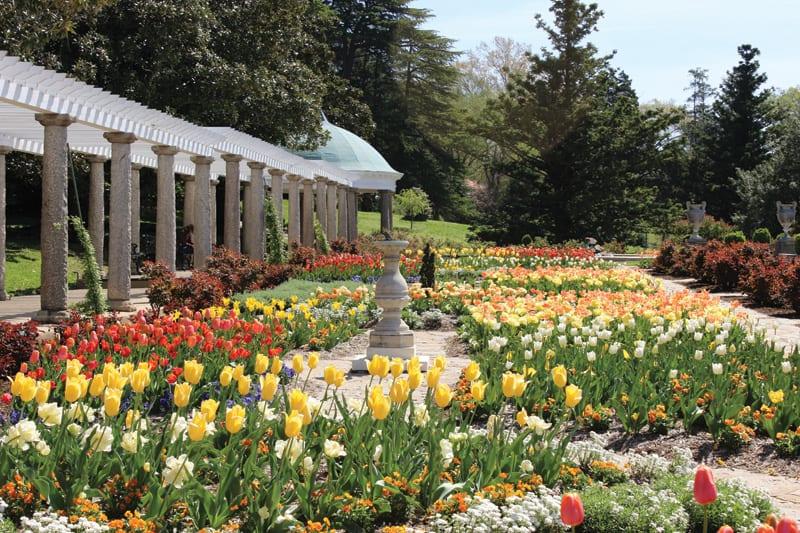 Maymont's Italian Garden