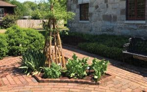 Herb_Garden Image