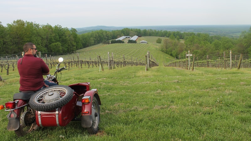 Honah Lee Vineyard