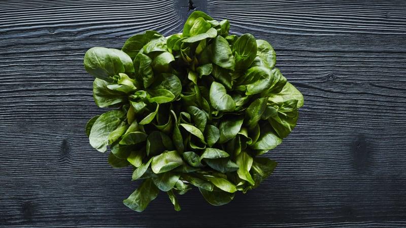 Vitamin E Leafy Green Image