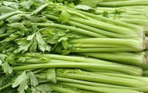 Celery has many dietary and health benefits Image
