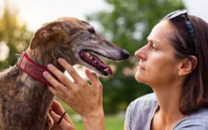 Woman with dog who is way too obsessed with her Image