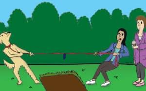 BOOMER Contest Image