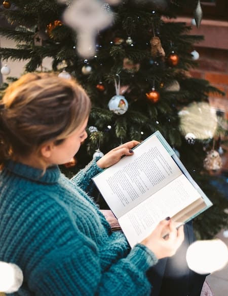 Books for Christmas reading