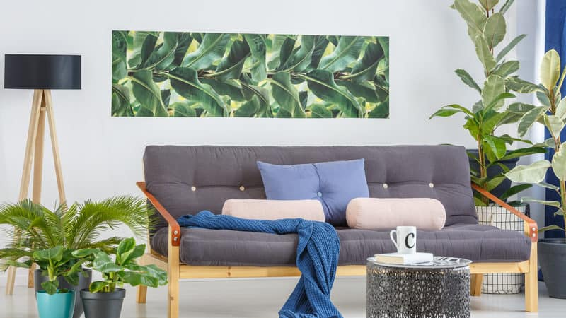 inexpensive home improvements include plants, new furniture, and accessories Image