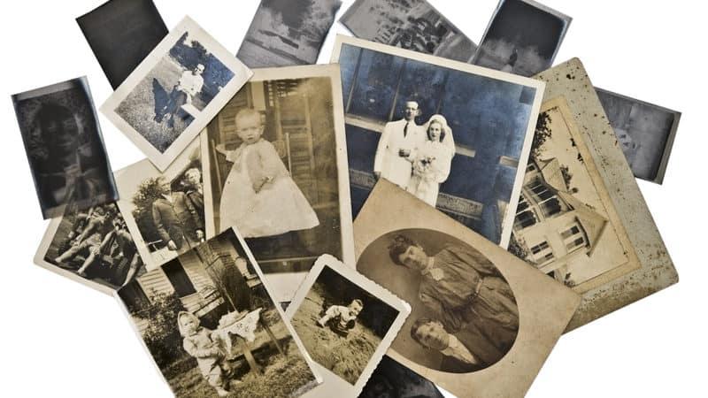 DNA family secret Image