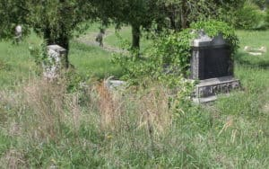 Woodland Cemetery, a historic African American cemetery in Richmond, Virginia, became overgrown and vandalized. These were the gravestones of Daisy Jones and Alice Royall in April 2013. Photo by John Shuck Image