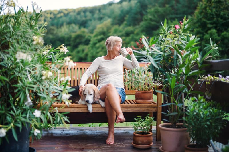 Senior woman with dog on beautiful terrace