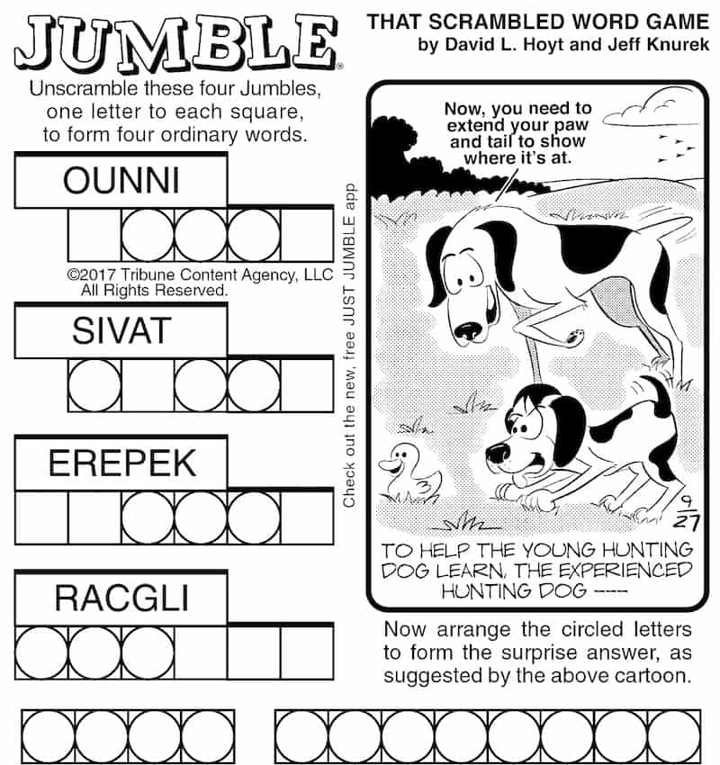 Jumble brain game for boomers