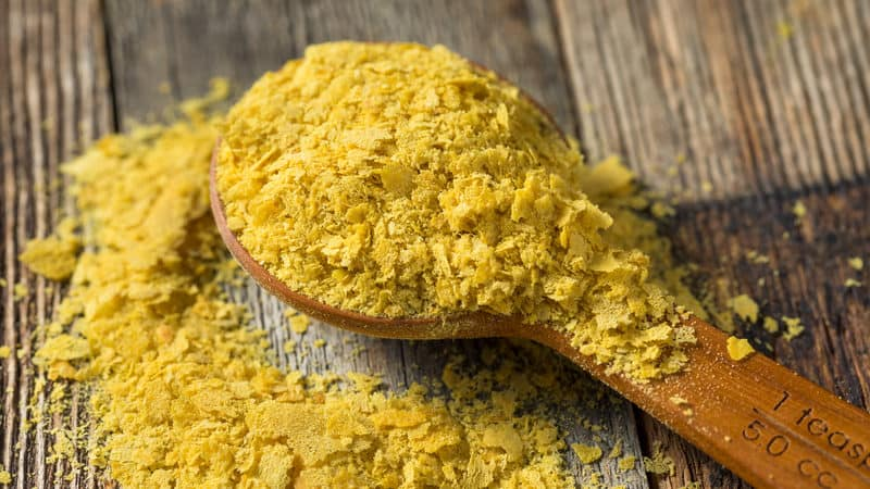 Nutritional yeast on a spoon Image