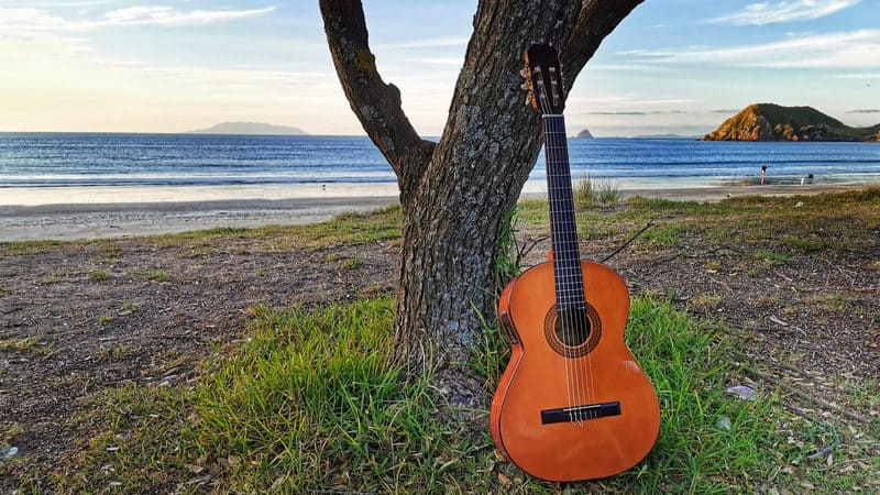 Walden playing guitar on the beach Image