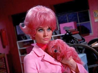 Diane McBain co-starred in 2 episodes of TV's Batman as Pinky Pinkston - ABC - for Diane McBain actress turns author
