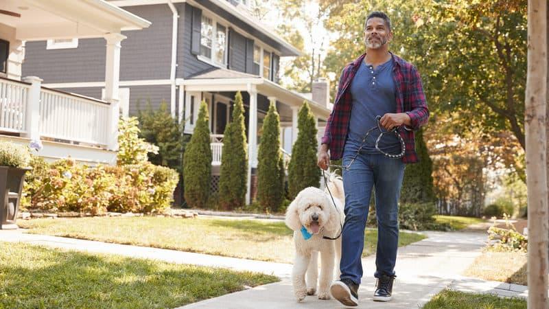 Man walking dog for Greg Schwem's humor on walking during the pandemic. Credit: monkey business images dreamstime Image