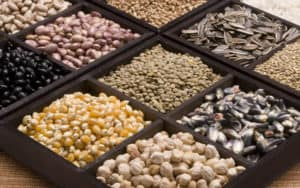 Whole bunch of nutritious seeds Image