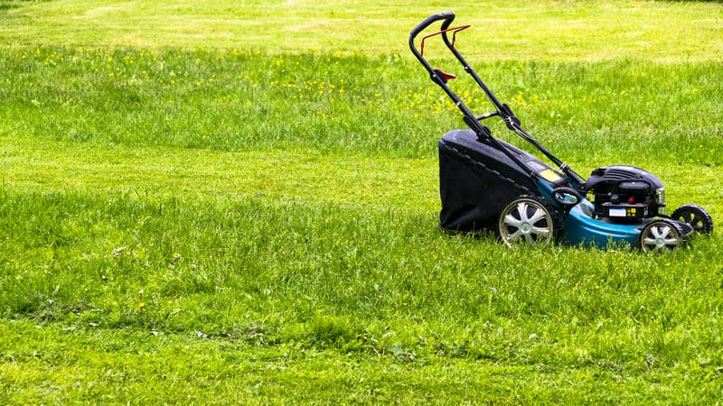 Lawnmower on a partially mowed lawn, for Vaccination lotteries and rewards request Image