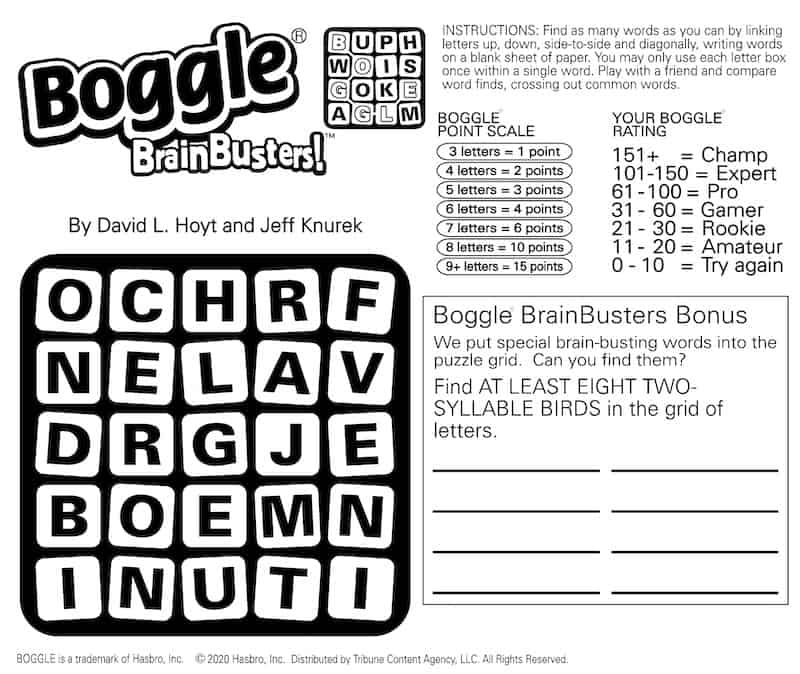 Boggle puzzle for the birds