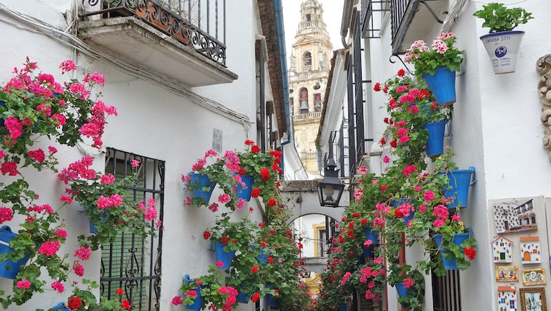 Streets of Andalusian Cordoba, for Spanish Cordoba through a locals' focus Image