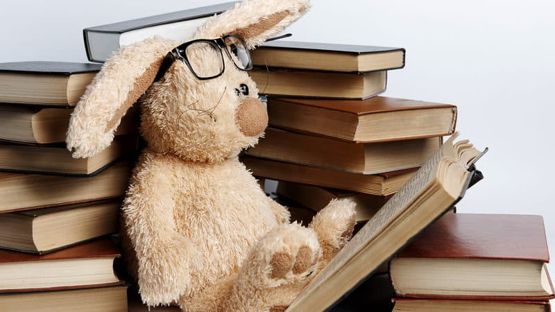 stuffed bunny with books viktoriia novokhatska dreamstime. For Finding your next book to read Image