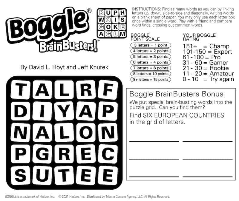 Boggle BrainBuster puzzle. word search brain teaser