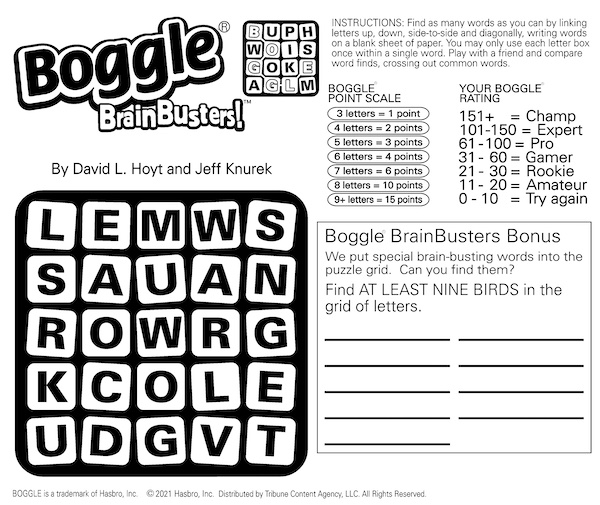 Mind Bending Boggle BrainBusters: find the birds and more