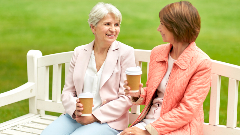 Two senior women friends who are politically divided Image